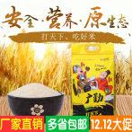 广勤大米苏软香5kg苏北粳米软糯香醇煮米饭非东北大米人气爆款