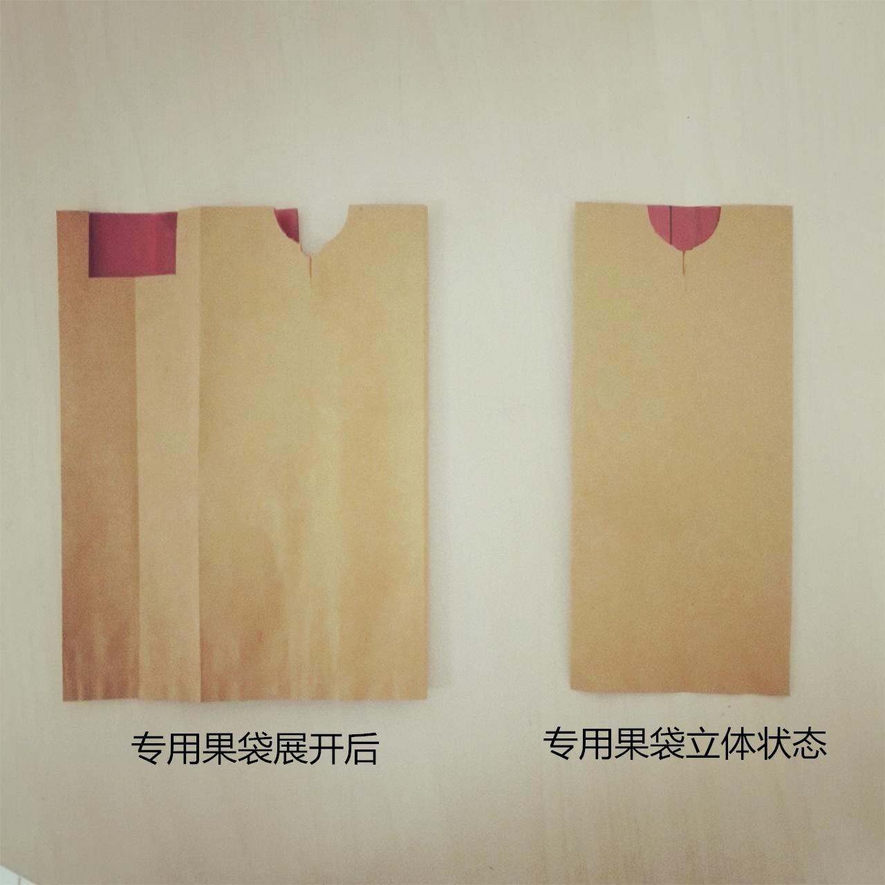 苹果套袋苹果纸袋水果套袋红蜡袋速美果苹果梨套袋机专用立体果袋