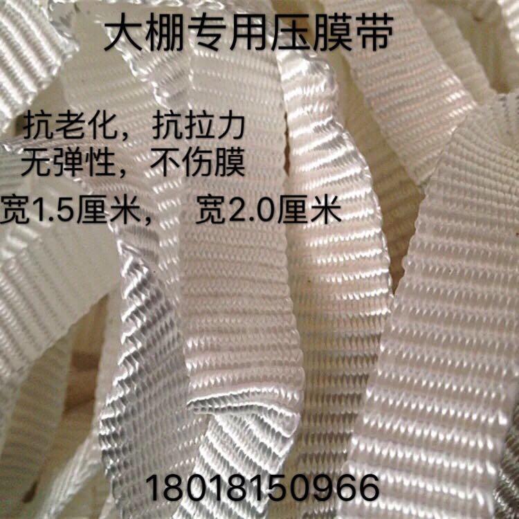促销包邮园艺温室大棚配件压膜线绳葡萄线加厚白色抗老化压膜带