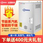 燃气蒸汽发生器商用豆腐制品设备液化天然气蒸炉煮浆机小型蒸汽机